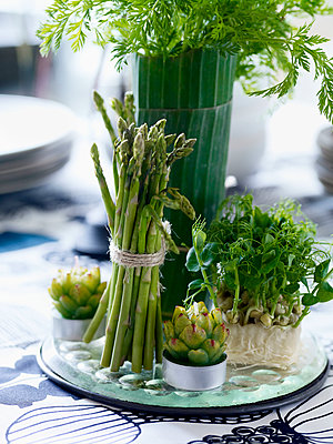 Cress, parsley and asparagus shoots on table centrepiece - p349m2167821 by Polly Wreford