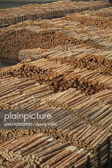 Holzindustrie - p347m2020650 von Georg Kühn