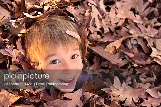 Boy playing in fallen leaves, Benton, Pennsylvania, USA - p1166m2201461 by Beck Photography