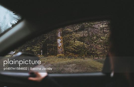 Autofahren im grünen Wald - p1497m1584602 von Sascha Jacoby