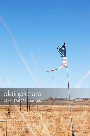 Zerfledderte Flagge - p214m972507 von hasengold