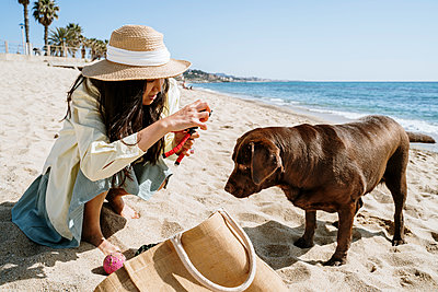 Woman adjusting slingshot by Labrador dog on beach during weekend - p300m2281344 by VITTA GALLERY