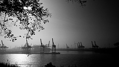 Hamburg harbour in the fog - p551m1585093 by Kai Peters