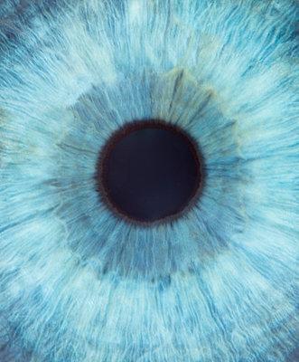 Pupille - p608m1161640 von Jens Nieth