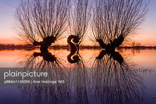 p884m1145359 von Alex Huizinga/ NIS