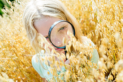Little girl examining wheat ears in field, with magnifying glass - p300m2160384 von Fotoagentur WESTEND61