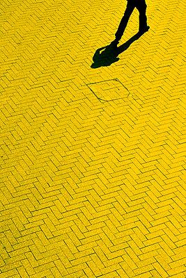 Shadow - p4320970 by mia takahara