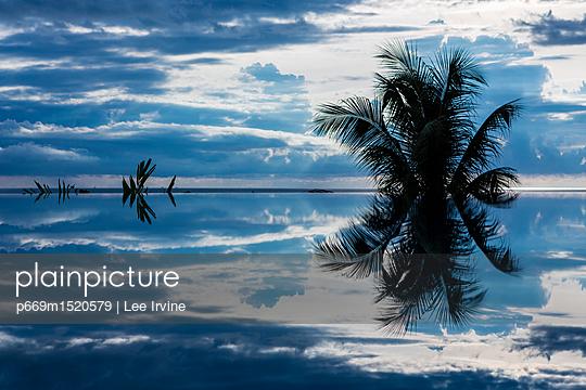 p669m1520579 von Lee Irvine