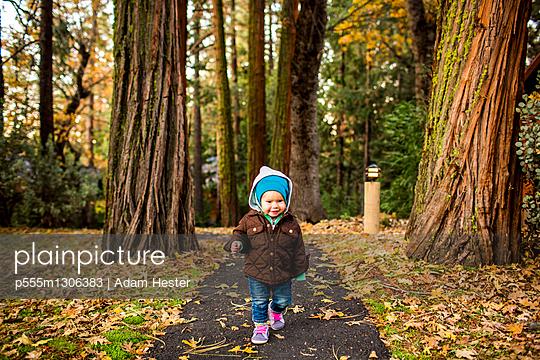 Caucasian baby girl walking in autumn park - p555m1306383 by Adam Hester