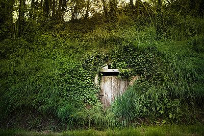 Hidden door 2 - p1007m853047 by Tilby Vattard