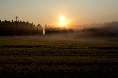 Morning sun in the countryside - p1242m1194746 by teijo kurkinen