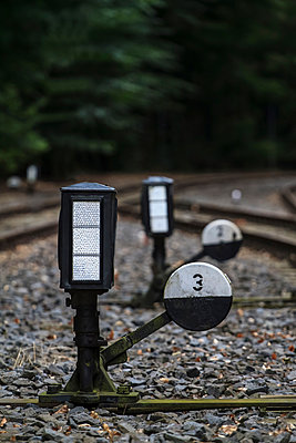 Railway switch - p417m918578 by Pat Meise