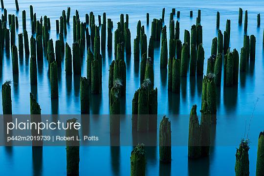 p442m2019739 von Robert L. Potts