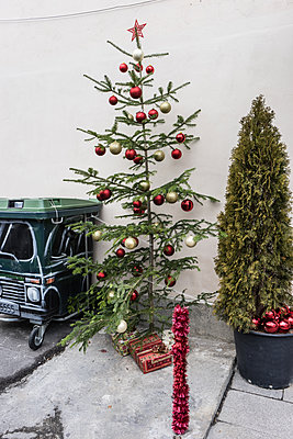 christmas tree - p310m1487272 by Astrid Doerenbruch