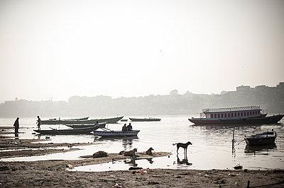 Ganges riverside - p1007m1144335 by Tilby Vattard