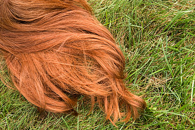 Red hair of Caucasian girl laying in grass - p555m1303502 by JGI/Jamie Grill