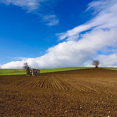 Field Preparation - p813m815841 by B.Jaubert