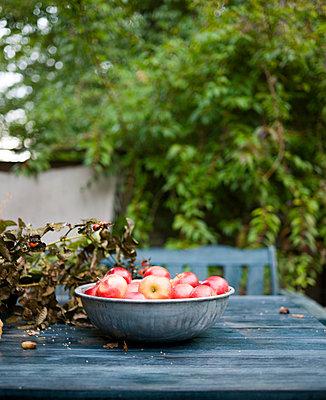 Äpfel auf einem Gartentisch - p972m1160288 von Patric Johansson