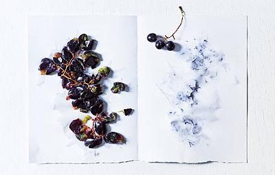 Trauben auf einem Küchenpapier - p1397m2054574 von David Prince