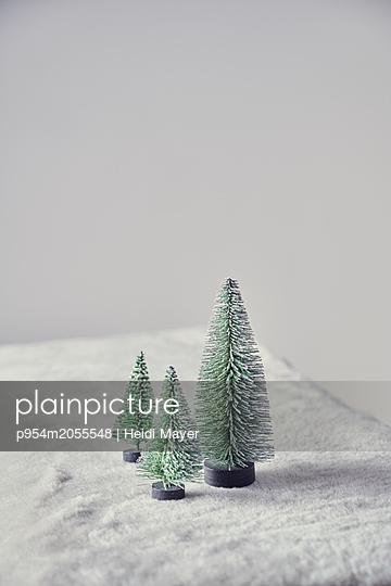 Winter - p954m2055548 von Heidi Mayer