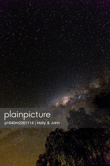 Sternenhimmel und Bäume, Südafrika - p1640m2261114 von Holly & John