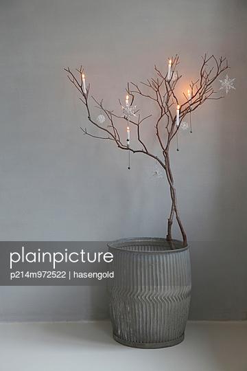 Stimmungsvolle Zweigdeko - p214m972522 von hasengold