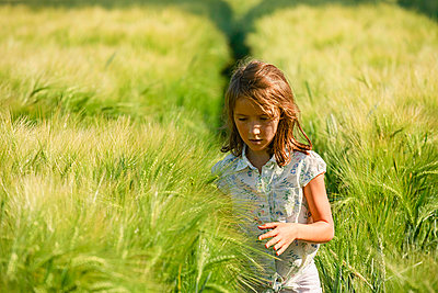 Curious girl walking in sunny, idyllic rural green wheat field - p301m2076003 by Sven Hagolani