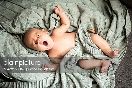 Baby - p842m1588875 von Renée Del Missier