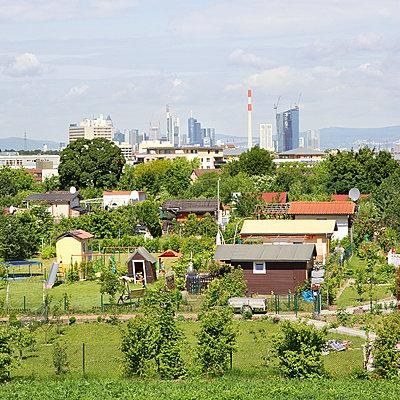 Allotment Gardens in Frankfurt - p606m822718 by Iris Friedrich