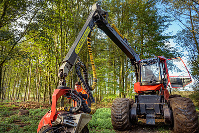 Operator with tree harvesting machine in sustainable forest - p924m2271180 by Monty Rakusen