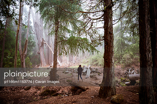 p1166m1163774 von Cavan Images