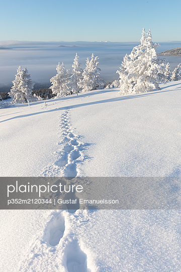 Footprints in snow - p352m2120344 by Gustaf Emanuelsson
