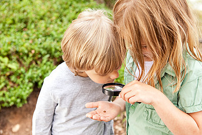 Boy and girl looking through magnifying glass on beetle - p300m1059039f by Michelle Fraikin