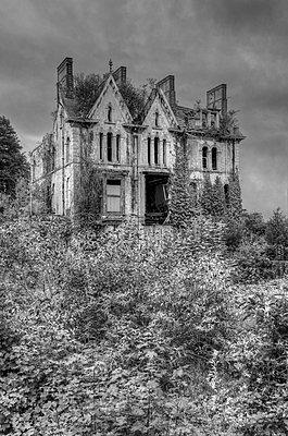 Derelict Overgrown, Victorian Mansion - p1562m2245070 by chinch gryniewicz
