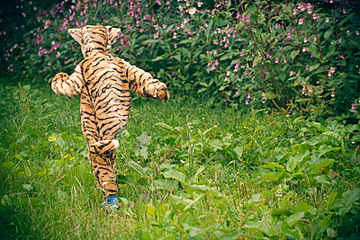 Boy wearing tiger costume outdoors - p429m746850f by Colin Hawkins