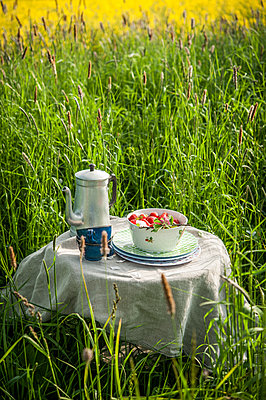 Picnic with fresh strawberries - p1288m1161435 by Nicole Franke