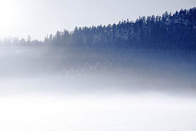 Hoar Frost - p2351396 by KuS