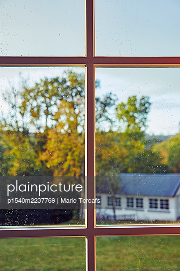 Looking out of window - p1540m2237769 by Marie Tercafs