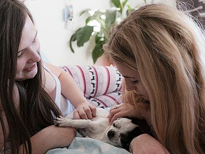 Zwei junge Frauen streicheln einen Hund - p1383m2045111 von Wolfgang Steiner