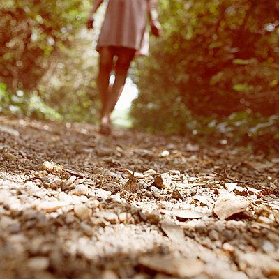 Through a forest - p1105m882493 by Virginie Plauchut