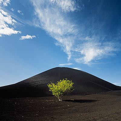Cerro Negro, Nicaragua - p844m880795 von Markus Renner