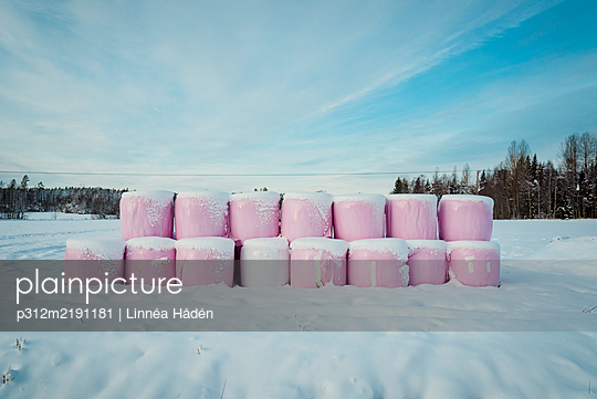 Bales of hay at winter - p312m2191181 by Linnéa Hådén