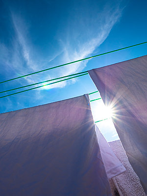 Bed sheets Hanging on Washing Line under Blue Sunny Sky - p669m1443213 by David Harrigan