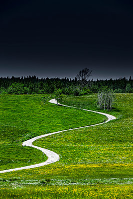Path into the dark - p248m1030791 by BY