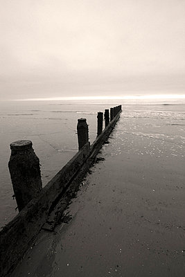 Groyne leading out to sea in Sussex - p3313114 by Gail Symes
