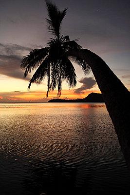Sonnenuntergang Polynesien - p045m716352 von Jasmin Sander
