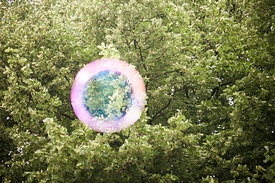 Pink swimming ring in tree canopy, collage - p1685m2272488 by Joy Kröger