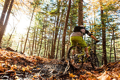 Autumn mountain biking in the WHite Mountains of New Hampshire. - p343m1168194 by Joe Klementovich