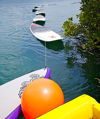 Surfbretter fürs Stand Up Paddling II - p606m885565 von Iris Friedrich