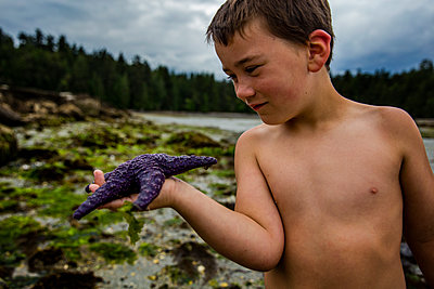 front view of boy holding a starfish on the beach - p1166m2095299 by Cavan Images